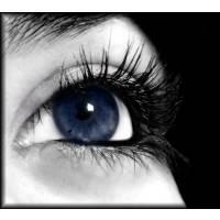 blue eyes in the darkness blue eyes in the darkness