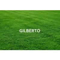 Gilberto Ongaro