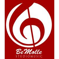 Bemolle Orchestra