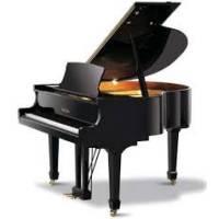 Pianista professionista