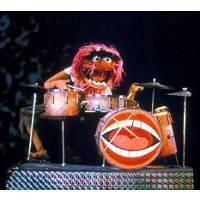 Drummer Luc
