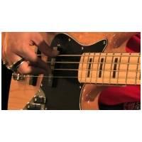 Roses Bass