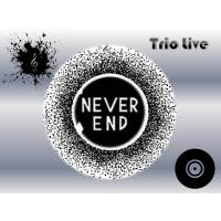 NEVER END TRIO