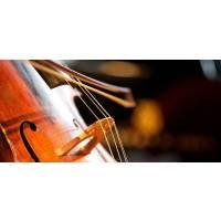 Cello Novecento