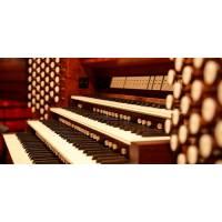 Organista Varese
