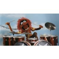 Biozz Drum