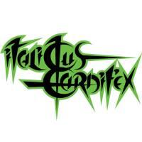 Italicus Carnifex