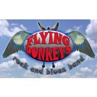 Flying Donkeys