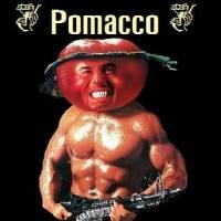 Pomacco