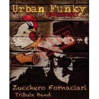 Urban Funky Chickens