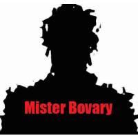 Mister Bovary