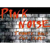 Pink Noise Tribute Band