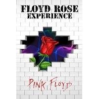 FLOYD ROSE experience