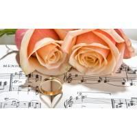 Trio Musica matrimonio Monza