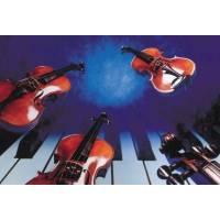 Musica cerimonie matrimonio Modena