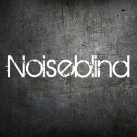 Noiseblind