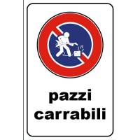 PAZZI carrabili band