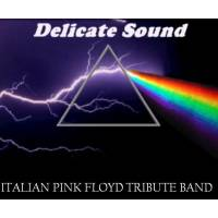 DELICATE SOUND  PINK FLOYD TRIBUTE BAND
