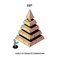 EEF Early Ettringite Formation
