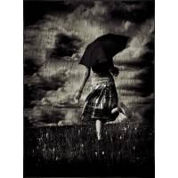 Black Rain Theory